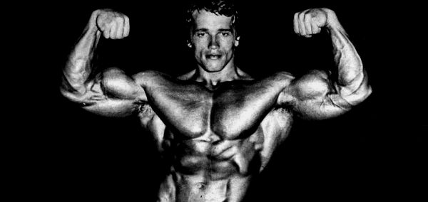 Arnold Schwarzeneggeru0027s Blueprint Training Program