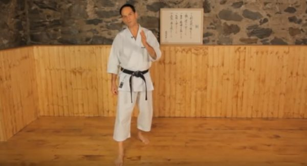 How to Do a Back Kick or Ushiro Geri