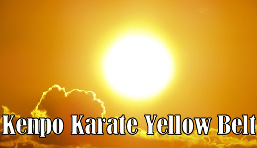Karate Yellow Belt
