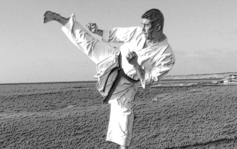 Karate Kicks - Sports and Martial Arts in the United States